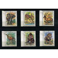 Центральноафриканская Республика 1982г. звери, 6м