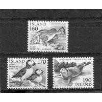 Исландия. Стандарт. Фауна. Вып.1980-2