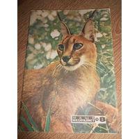 Журнал Юный натуралист 1973 #8