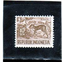 Индонезия. Mi:ID 172. Яванский Музедер (Tragulus javanicus). 1957.
