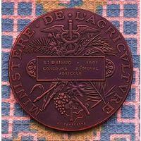 """Настольная медаль """"Великая Франция"""" 1891 года"""
