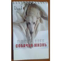 Собачья жизнь. Настольный календарь 2007 г