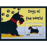 Либерия 2012 животные собаки шотландский терьер