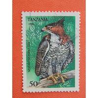 Танзания 1994г. Птицы.