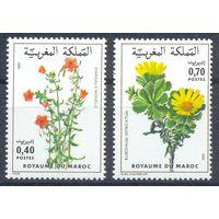 Марокко 1981 Цветы, 2 марки