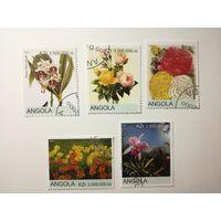 Ангола 2000. Цветы