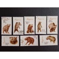 Албания.1965г. Бурые медведи. Полная гашеная серия.