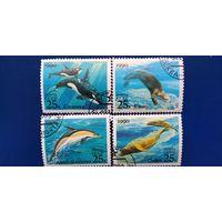 Марки СССР 1990 год. Морская фауна