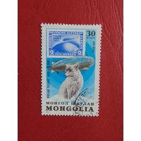Монголия 1981г. Волк