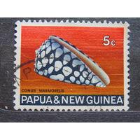 Папуа Новая-Гвинея 1968 г. Раковина.
