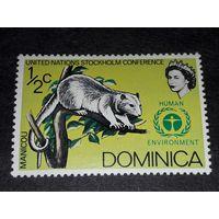 Доминика 1972 Фауна чистая марка