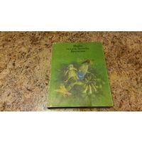 Мифы, сказки, легенды Бразилии - художник Попов, мелованная бумага, цветные иллюстрации