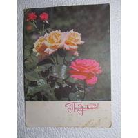 Почтовая карточка Поздравляю!,1970,фото Рязанцева,подписана,прошла почту-408