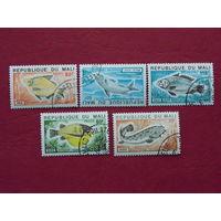 Мали 1980г.  Рыбы.