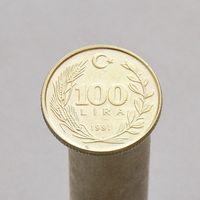 Турция 100 лир 1991