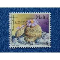 Мальта  2002г. Цветы.
