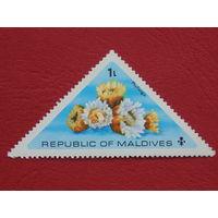 Мальдивы. Цветы.