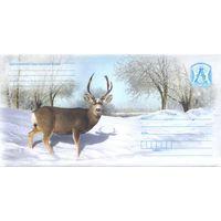 Беларусь. Маркированные конверты 2008 года