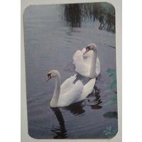 Календарик. Лебеди. 1989