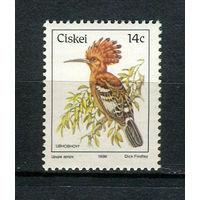 Сискей (Южная Африка) - 1986 - Птицы - [Mi. 97] - полная серия - 1 марка. MNH.