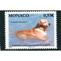 Монако. Международная выставка собак в Монте-Карло