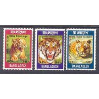 Бангладеш тигр кошачьи фауна