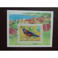 Мадагаскар. 1975г. Птицы.
