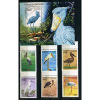 Чад 1999г. птицы Африки, 6м, 1 блок