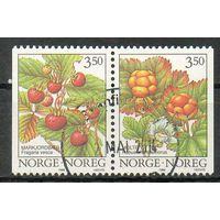 Флора Ягоды Норвегия 1996 год серия из 2-х марок