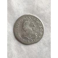 6 грошей 1681(5)