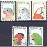 Камбоджа птицы фауна