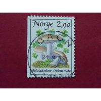 Норвегия 1988г. Грибы.