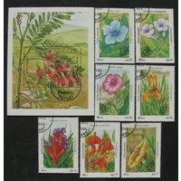 Афганистан 1985 Флора Международная выставка марок Аргентина-85 полная серия с блоком