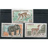 Камерун. Местные виды животных