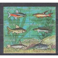 Бразилия Рыбы 1976 год чистая полная серия из 6-ти марок в общей сцепке