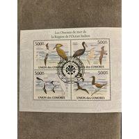 Коморские острова 2010. Птицы побережья Индийского океана. Малый лист