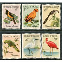 Венесуэла. Птицы