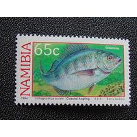Намибия 1994 г. Морская фауна.