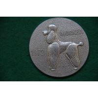 Медаль настольная   6 см