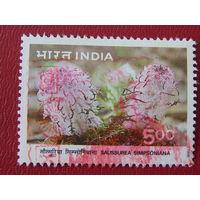 Индия  1996г. Флора.