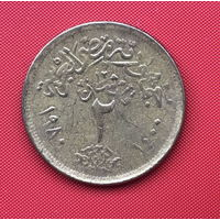 75-10 Египет, 2 пиастра 1980 г.
