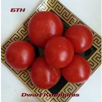 Семена томата Dwarf Krumpiras