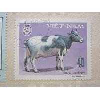 Домашние животные - корова 1979 (Вьетнам) 1 марка