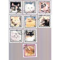 Марки кошки, Экваториальная Гвинея