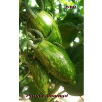 Семена томата Purple Smaragd (Фиолетовый изумруд)