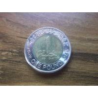 Египет 1 фунт 2007.