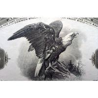 AMERICAN BANK NOTE COMPANY, 1935 год