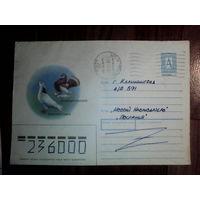 Конверт.Россия.1993 год