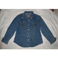 Рубашка Gloria Jeans девичья, размер по воротничку 32, 100% хлопок