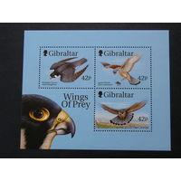 Гибралтар 1999, Птицы хищные (4)